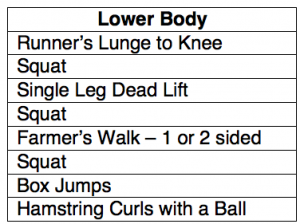 lower body exercises